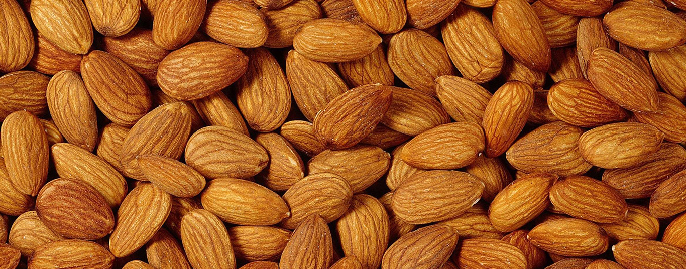 Premium Iranian Almond Supplier & Exporter